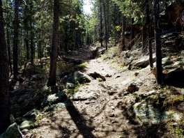 Rocky portion of the Cub Creek trail in Arapaho National Forest in Colorado.