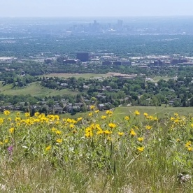 Looking out at Denver from Green Mountain