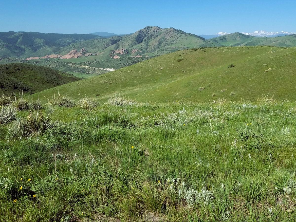 Green Mountain Park