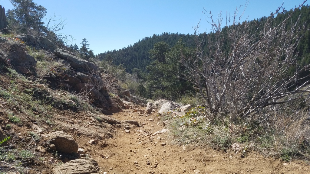 Apex Trail