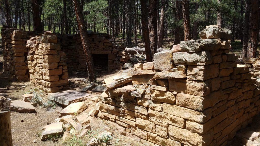 Stone Chiney of abandon brick house