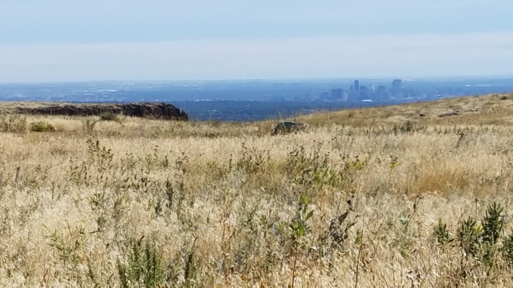 Denver Skyline on North Mesa