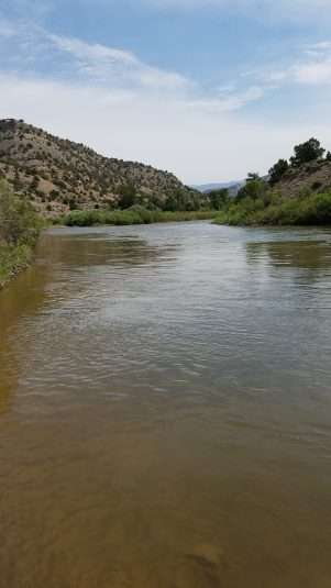 Colorado River at Lyons Gulch free campground.