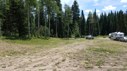 Free Colorado Campsite