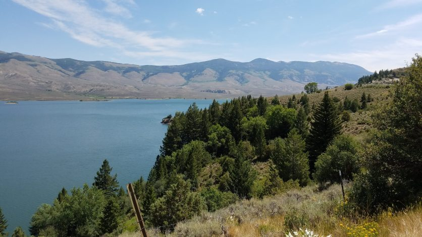 Forest around Lake Heeney (Green Mountain Reservoir)