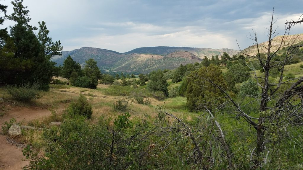 Gorgeous Rocky Mountain Trail in Hall Ranch
