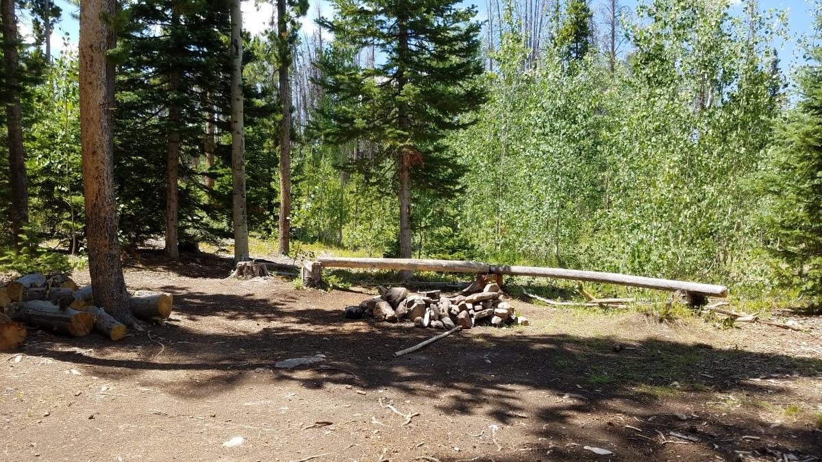 Free Camping at Spring Creek in Colorado