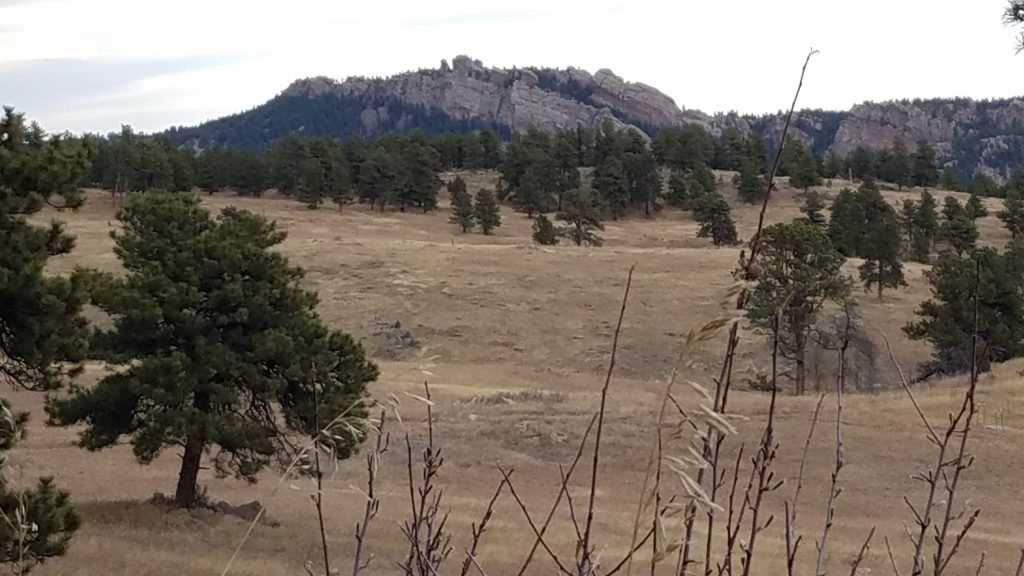 Grass meadow and rock bluff at White Ranch Park.