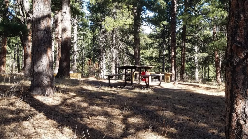 Picnic table at free campsite close to Golden Colorado.