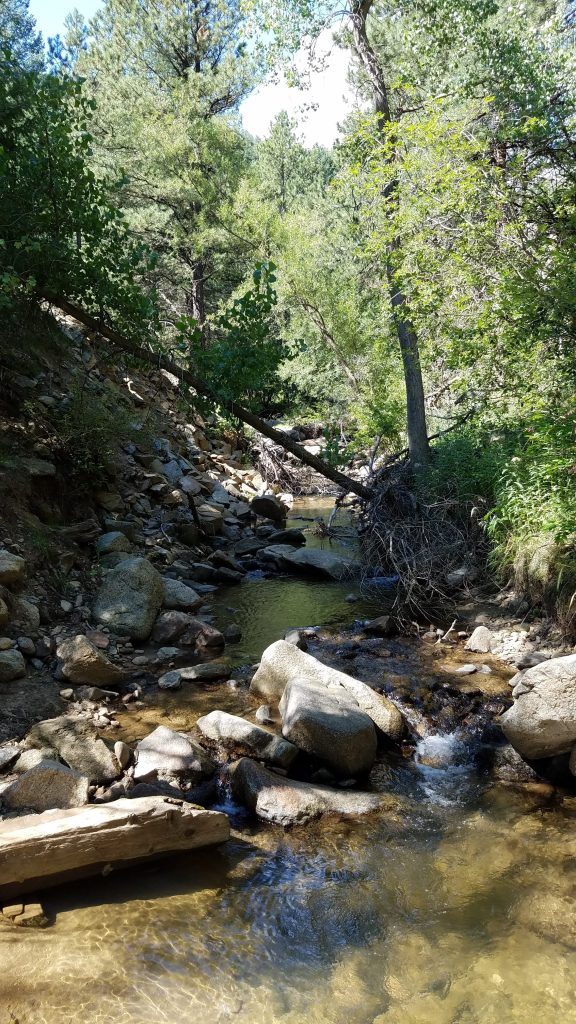 Creek in Betasso Preserve near Boulder Colorado