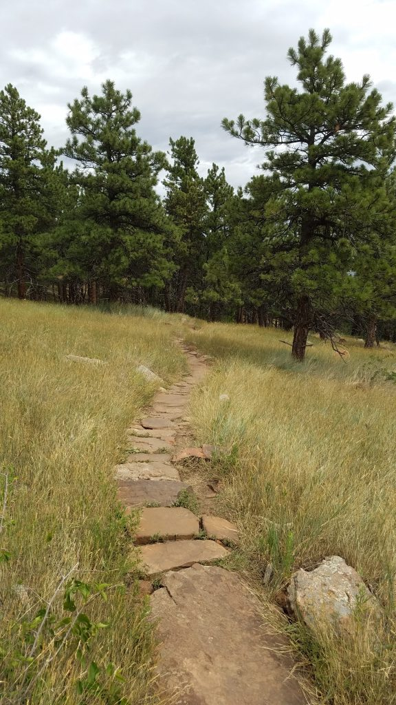 Stone Path in Heil Ranch Park